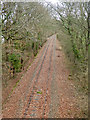 SX8475 : Industrial branch line near Teigngrace by Chris Allen