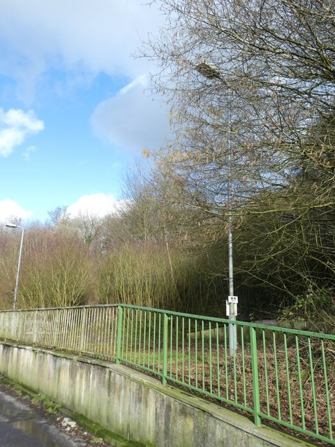 Railings in lay-by by A449 south of Bertholey House