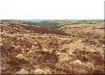 SS8229 : Rough moorland above Anstey's Combe by Roger Cornfoot