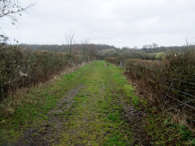 Farm Track to North Wood