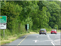 S4508 : N25 to the east of  Carroll's Cross Roads by David Dixon