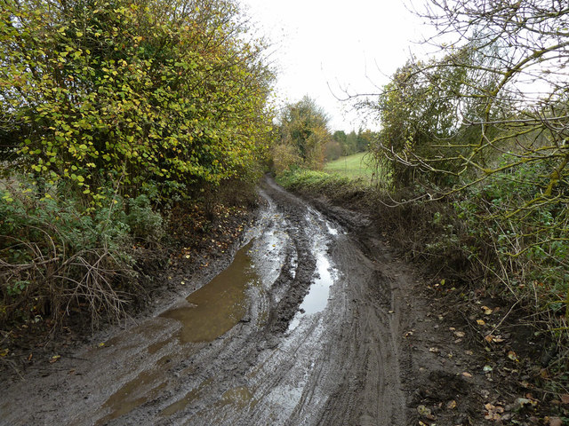 Ebbisham Lane