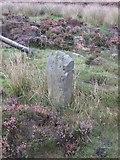 SE8696 : Old Boundary Marker by Milestone Society