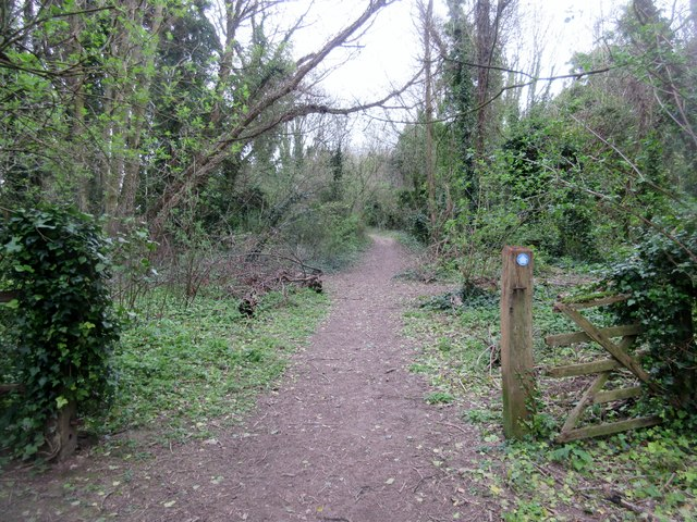 Bridleway to Mount Carvey (1)
