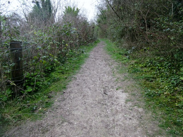 Bridleway to Mount Carvey (2)