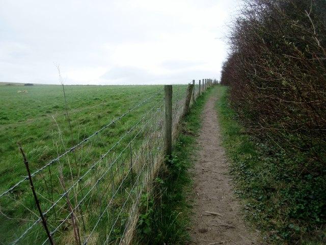 Bridleway to Mount Carvey (3)