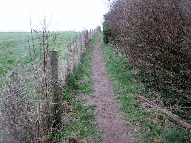 Bridleway to Mount Carvey (4)