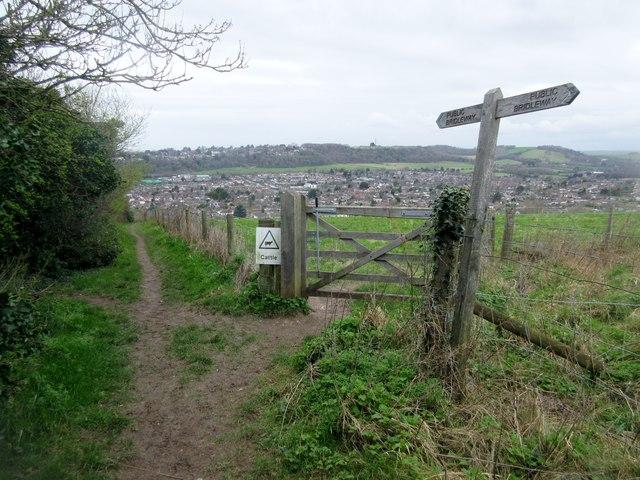 Gate adjacent to bridleway