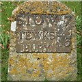 SP0829 : Old Milestone by C Minto