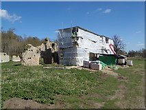 TM3669 : Sibton Abbey Ruins by Adrian Cable
