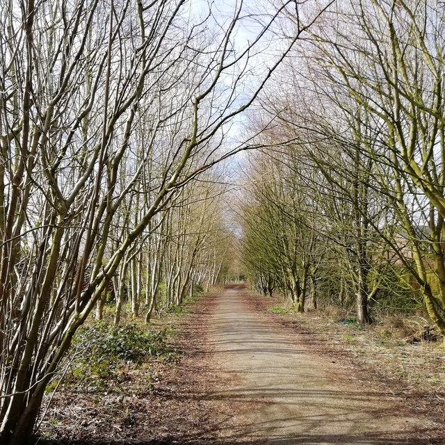The Carriage Drive, Croxteth Park