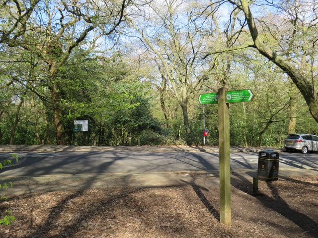 Capital Ring in Queen's Wood, Highgate