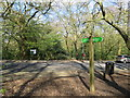 TQ2888 : Capital Ring in Queen's Wood, Highgate by Malc McDonald
