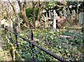 TG2408 : Overgrown family burial plot surrounded by iron railings by Evelyn Simak