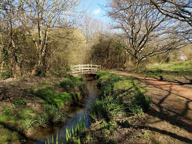 Stream through Waterlea Meadow