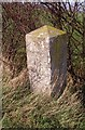 TM1888 : Old Milestone by M Hallett