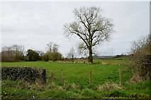 H5956 : Sess Townland by Kenneth  Allen