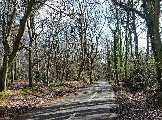 Gypsy Lane near Hedgerley (1)