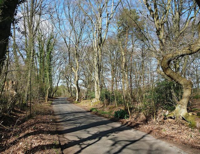 Gypsy Lane near Hedgerley (2)