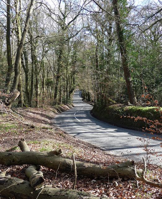 Templewood Lane near Hedgerley (1)