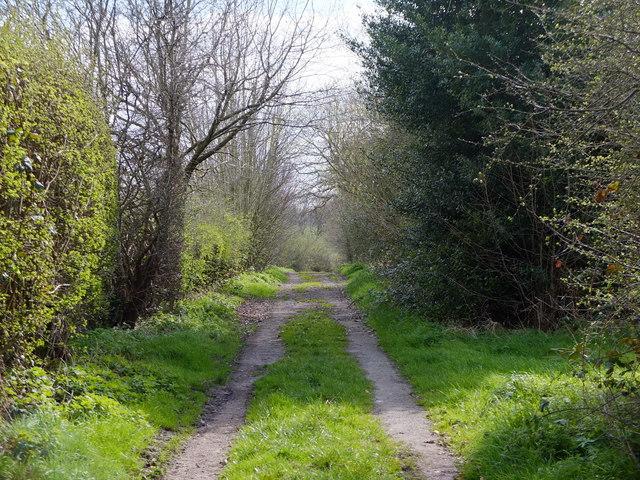 Path near Booth's Hill Farm, Lymm
