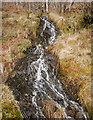 NH2828 : Woodland stream, Glen Affric by Craig Wallace
