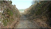 SS6644 : Lynton and Barnstaple Railway - Disused Trackbed near Parracombe by Barrie Cann