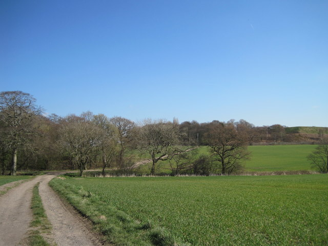 Track to Cronton and Pex Hill