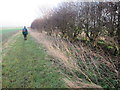 SE9255 : Chalkland  Way  toward  Wetwang by Martin Dawes