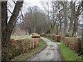 NH6953 : Castleton Farm Road by valenta