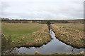 NH9821 : Draining the Flood Plain by Anne Burgess