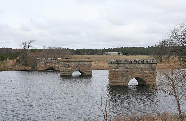 Bridge Pillars