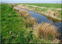 TM4599 : Drainage ditch in the Haddiscoe Marshes by Evelyn Simak
