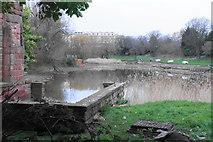 SJ3688 : Lake in Princes Park by Bill Boaden