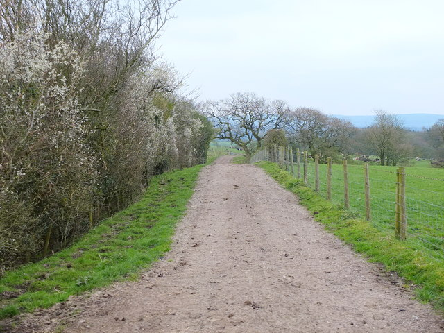 Footpath From Frances Green to Ribchester near Lord's Farm