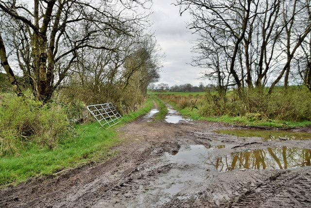 A muddy lane, Bancran