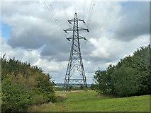 TQ5885 : Pylon, Thames Chase by Robin Webster
