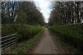 SE5440 : Looking South East along Oak Avenue by Chris Heaton