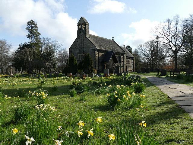 Daffodils in St John's churchyard, Adel