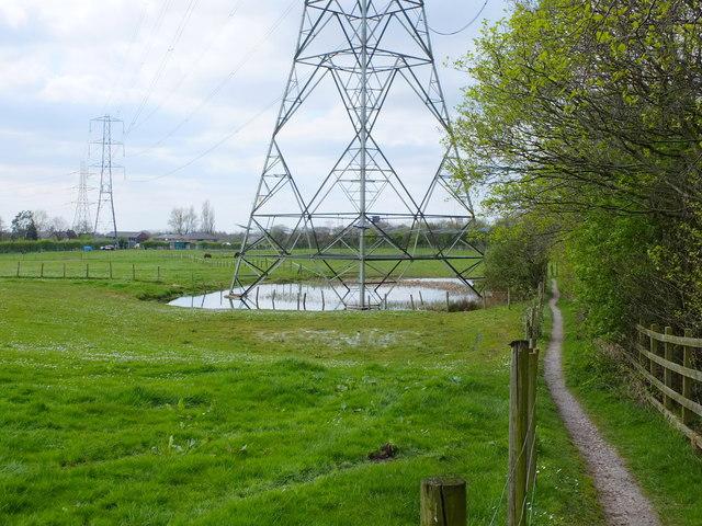 Path South of the M60 at Wardley Moss