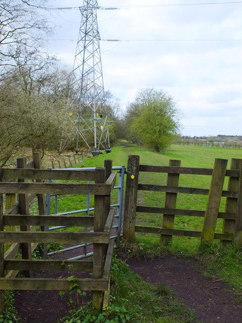 Path at Clifton Moss