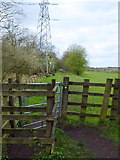 SD7603 : Path at Clifton Moss by Gary Rogers