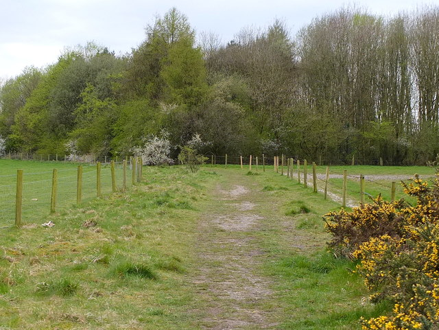 The Salford Trail between Linnyshaw Moss and the A6
