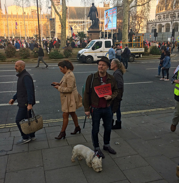 Brexit demo, Parliament Square (3)