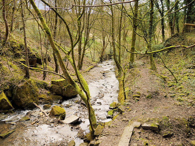 Dearden Brook from Plunge Mill