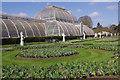 TQ1876 : The Palm House, Kew Gardens by Stephen McKay