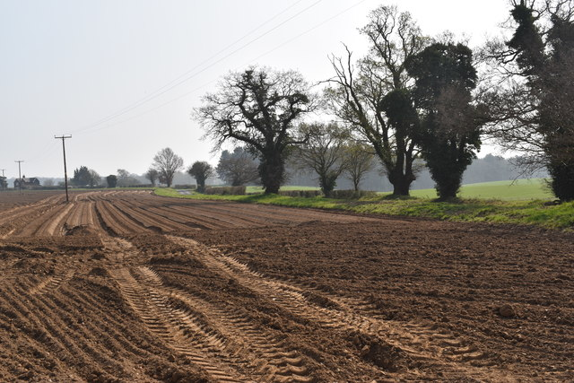 Ploughed field and trees lining Vicarage Lane, Wherstead