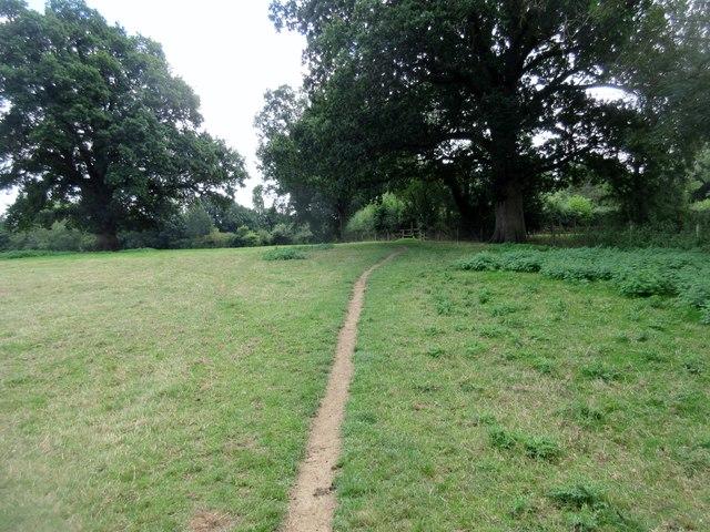 Sussex Border Path (5)