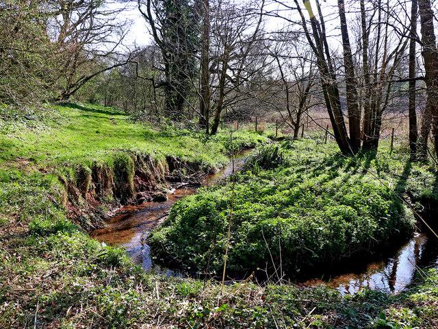 Nurton Brook meander east of Pattingham, Staffordshire