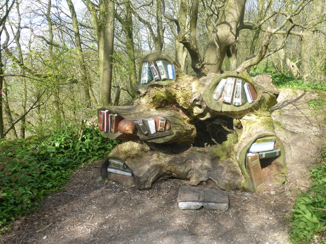 Library in a tree root on the woodland walk